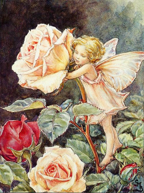 The-Rose-Child_C.M.Barker